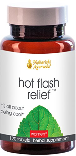 Hot Flash Relief, 500 mg, 120 Herbal Tablets (Hot Flash Remedy compare prices)