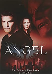 Angel - Season One (Slim Set)