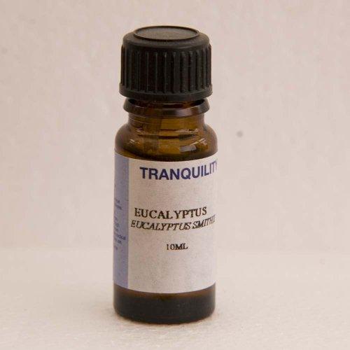 Eucalyptus Essential Oil [Misc.]