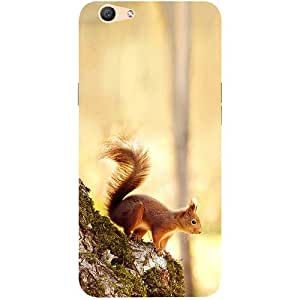 Casotec Squirrel Design 3D Printed Hard Back Case Cover for Oppo F1S