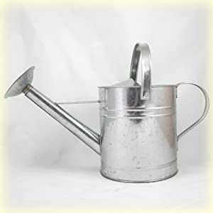 Small 1 gallon galvanised metal watering can rose garden outdoors - Gallon metal watering can ...