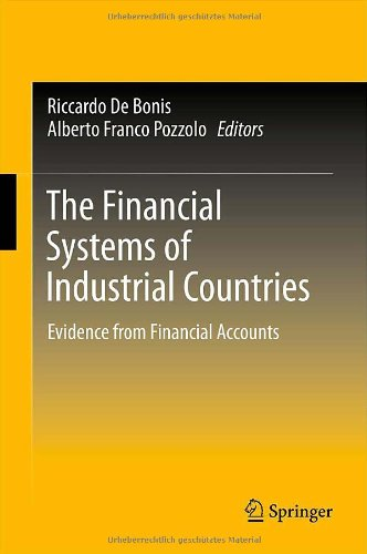 The Financial Systems of Industrial Countries: Evidence from Financial Accounts