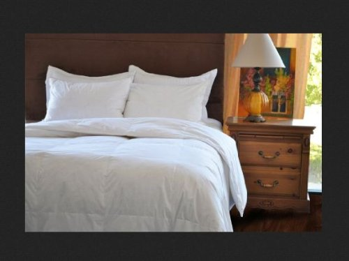 Natural Comfort Classic White Goose Feather Comforter, Queen Size