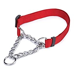 Guardian Gear Small Martingale Dog Collar, 5/8-Inch, Red