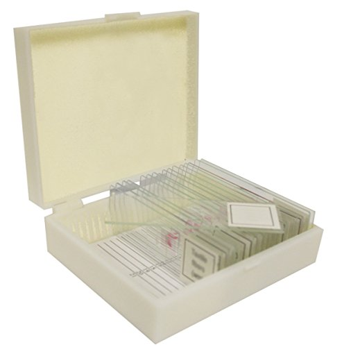 Walter Products B17113 Prepared Slide Set-Apologia Biology (Pack of 16)