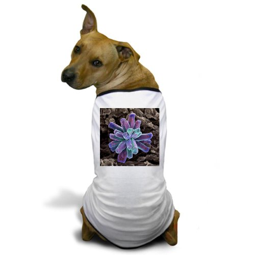 Cafepress Calcium Phosphate Crystal, Sem - Dog T-Shirt - S White [Misc.]