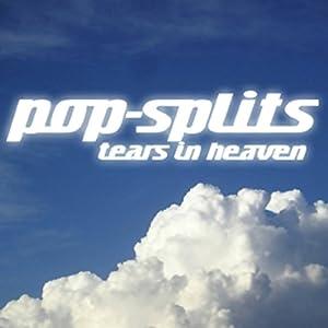 Tears in Heaven (Pop-Splits) 21 traurige und schöne Geschichten Audiobook