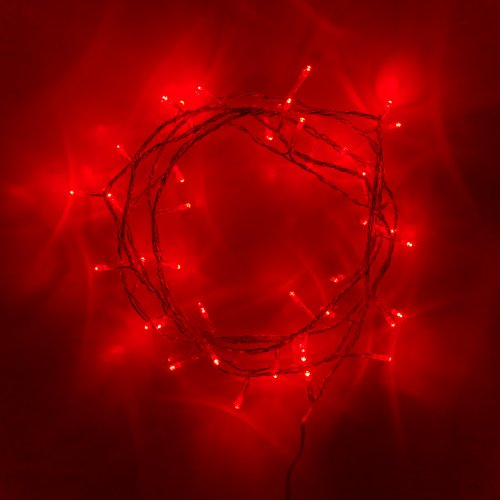 indoor-fairy-lights-with-40-red-leds-on-clear-cable-by-lights4fun