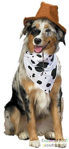 Pet Western Cowboy Dog Costume For Large Dogs