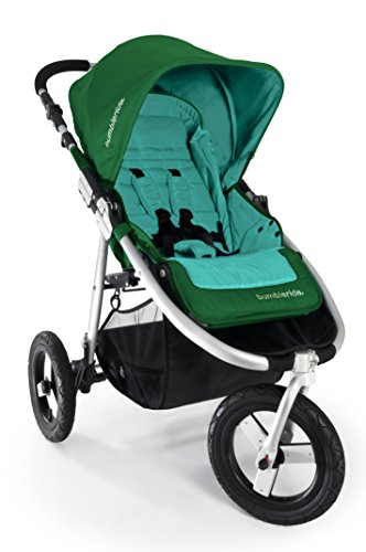 Bumbleride Indie Jogging Stroller, Green Papyrus - 1