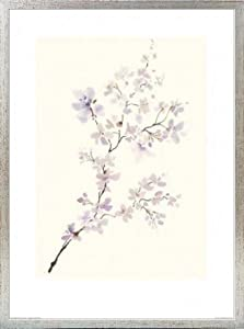 Flowers Poster Art Print and Frame (Wood) - Delicate Flower, Summer Thornton (32 x 24 inches)