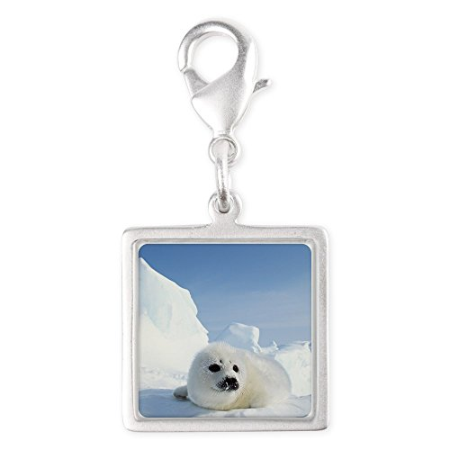 Silver Square Charm Harp Seal (Wet Seal Bracelet compare prices)