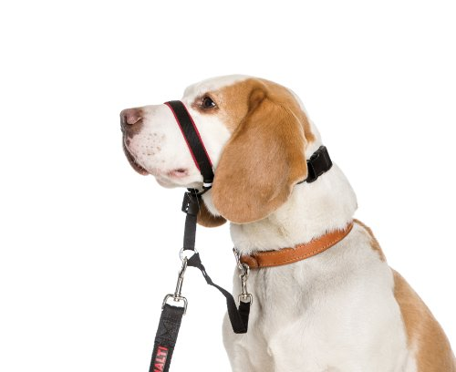 Halti Opti Fit Head Collar for Dogs, Medium