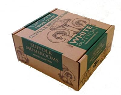 Taylors White Mushroom Grow Your Own Kit - Large Box