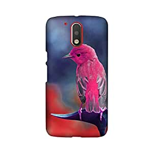 Moto G Play Perfect fit Matte finishing Bird Illustration Mobile Backcover designed by Abaci(Multicolor)
