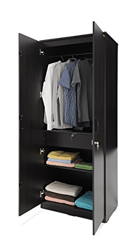 Zuari Two-Door Wardrobe (Brown)