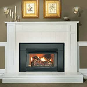 Napoleon Gicsk Gi3600n Gas Fireplace Insert Arched Cast Iron Surround No Home Kitchen