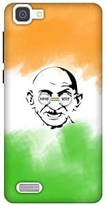 The Racoon Lean printed designer hard back mobile phone case cover for Vivo V1. (Swachh Bha)
