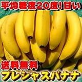 """送料無料!平均糖度20度【""""プレシャス""""バナナ】3.3kg(5房入)セット☆amazonばなな部門1位[訳あり][常温]フォーシーズン"""