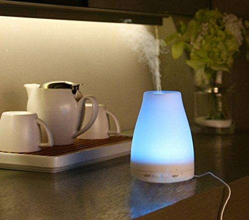 Saim® Glowing Effect Artificial Co…