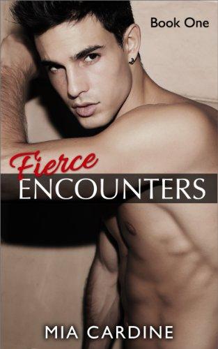 Fierce Encounters (Contemporary Romance) PDF