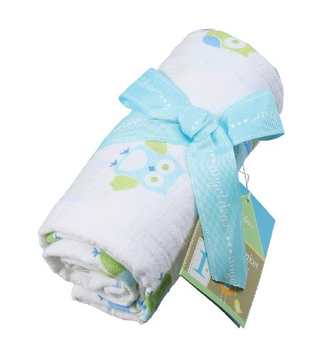 Angel Dear Muslin Swaddle Two Pack-Blue Owl and Line - 1