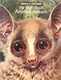 The Truth About Animal Senses (Animals Exposed!) (0439518075) by Bernard Stonehouse