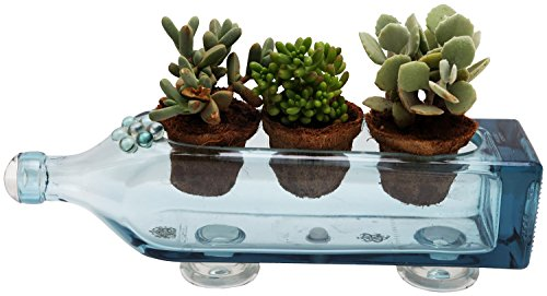 KRYSTAL KRAFT Hand Made Glass Planter (Sea Blue, 34 cm x 8 cm)