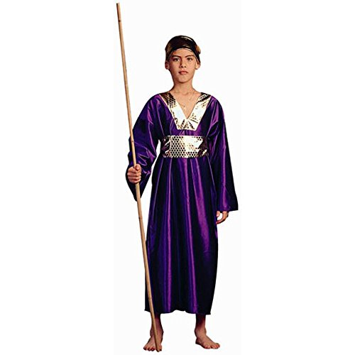 Child's Wiseman Biblical Costume (Size:Small 4-6)