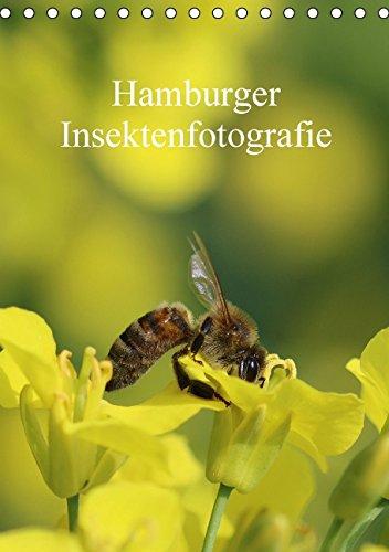 hamburger-insektenfotografie-tischkalender-2015-din-a5-hoch-insekten-faszinierende-bunte-wunderwelt-
