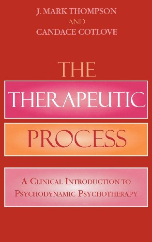 The Therapeutic Process: A Clinical Introduction to...