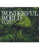 WONDERFUL WORLD(初回限定盤)(DVD付)