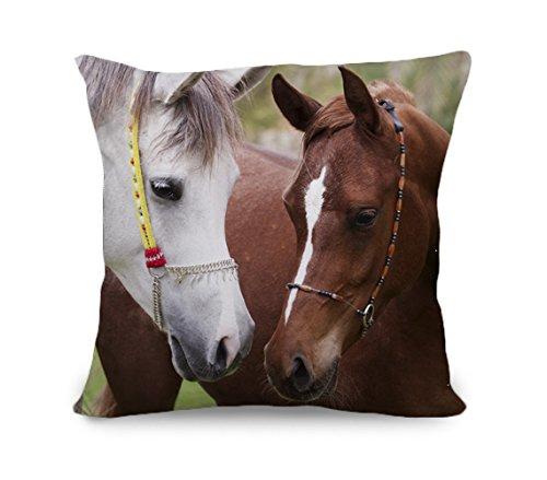 yinggouen-relative-cavallo-decorate-per-un-divano-federa-cuscino-45-x-45-cm