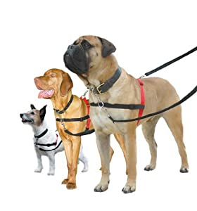 Halti Dog Harness, No Pull Dog Harness, Small
