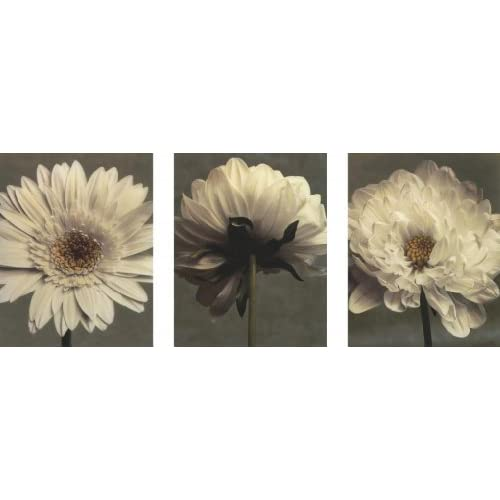 Daisy/Dahlia (Art Print, Stretched Canvas or Unstretched Canvas)