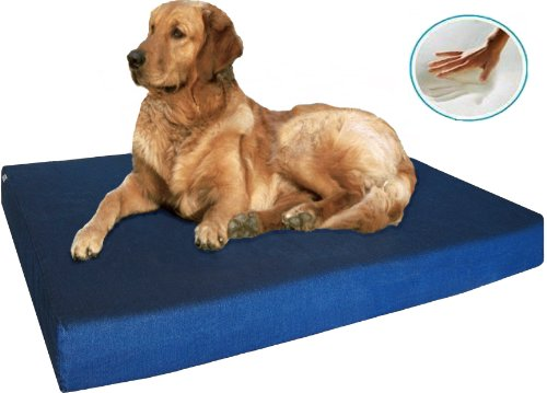 Therapeutic Dog Bed 1619 front