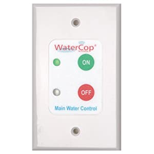 WaterCop Water Control Wall Switch