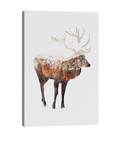 Andreas Lie Deer Canvas Print