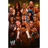 (22x34) WWE Group 2012 Wrestling Poster