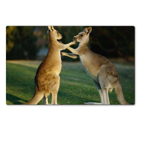 Animal Wildlife Kangaroo Mother Baby Australia Outback Table Mats Customized Made To Order Support Ready 28 6/16 Inch (720Mm) X 17 11/16 Inch (450Mm) X 1/8 Inch (4Mm) High Quality Eco Friendly Cloth With Neoprene Rubber Luxlady Large Deskmat Desktop Mouse front-1017260