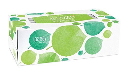 Seventh Generation Facial Tissue, 2-Ply Sheets, 175-Count Boxes (Pack of 36) (20 Percent Hydrogen Peroxide compare prices)