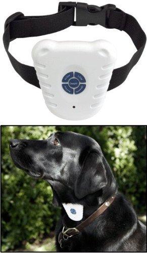 Electronic Dog Whistle