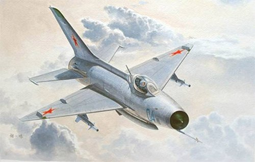 1/48 Mig-21 F-13/J-7 Fighter, 100% New Tool