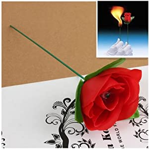 Stage Close Up Magic Trick Torch To Rose Tricks Flame Appearing Flower