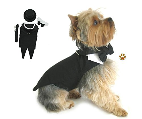 Formal Tuxedo Suit Harness and Pin Set- for Dog SIzes XXS thru 3XL (S- Chest 13-16