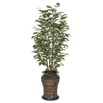 Artificial Variegated Ficus Tree in Planter