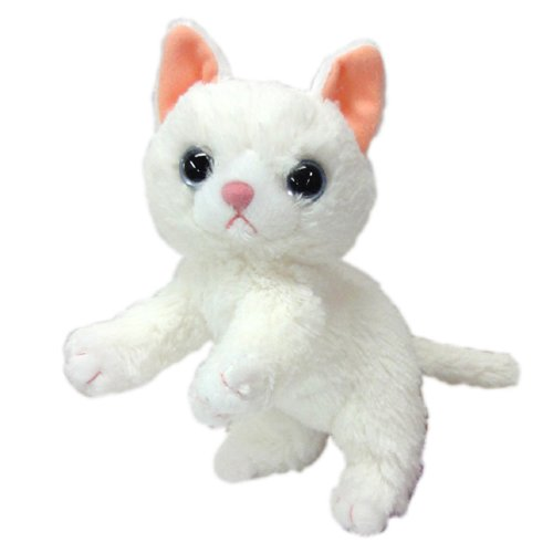 いっしょがいいね ビーンズぬいぐるみ(2S) 高さ15cm 白猫