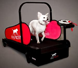 Mini pacer Dog Treadmill