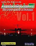 Approach & Landing in Japan 2004 Vol.1