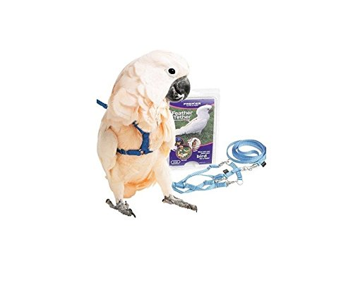 Premier Feather Tether Bird Harness and Leash (Bird Harness Medium compare prices)